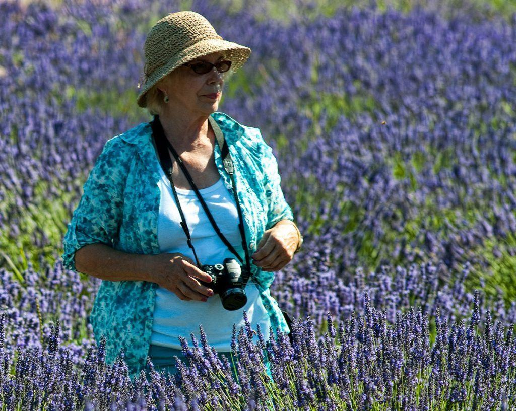 Diane Lavender Field