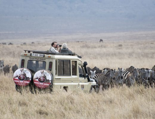 Luxury African Safari with Shutter Tours
