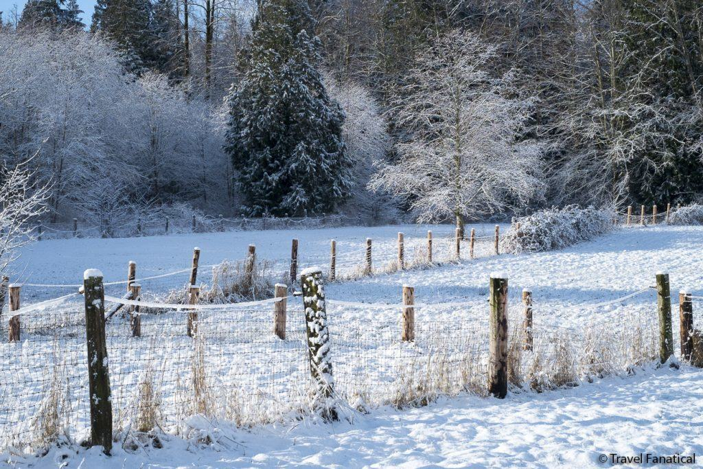 Snowy Field with Fence
