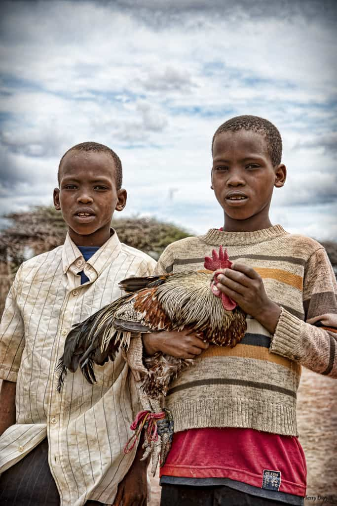 Boys with Chicken at Tanzania Market