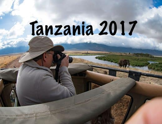 Tanzania Safari Video